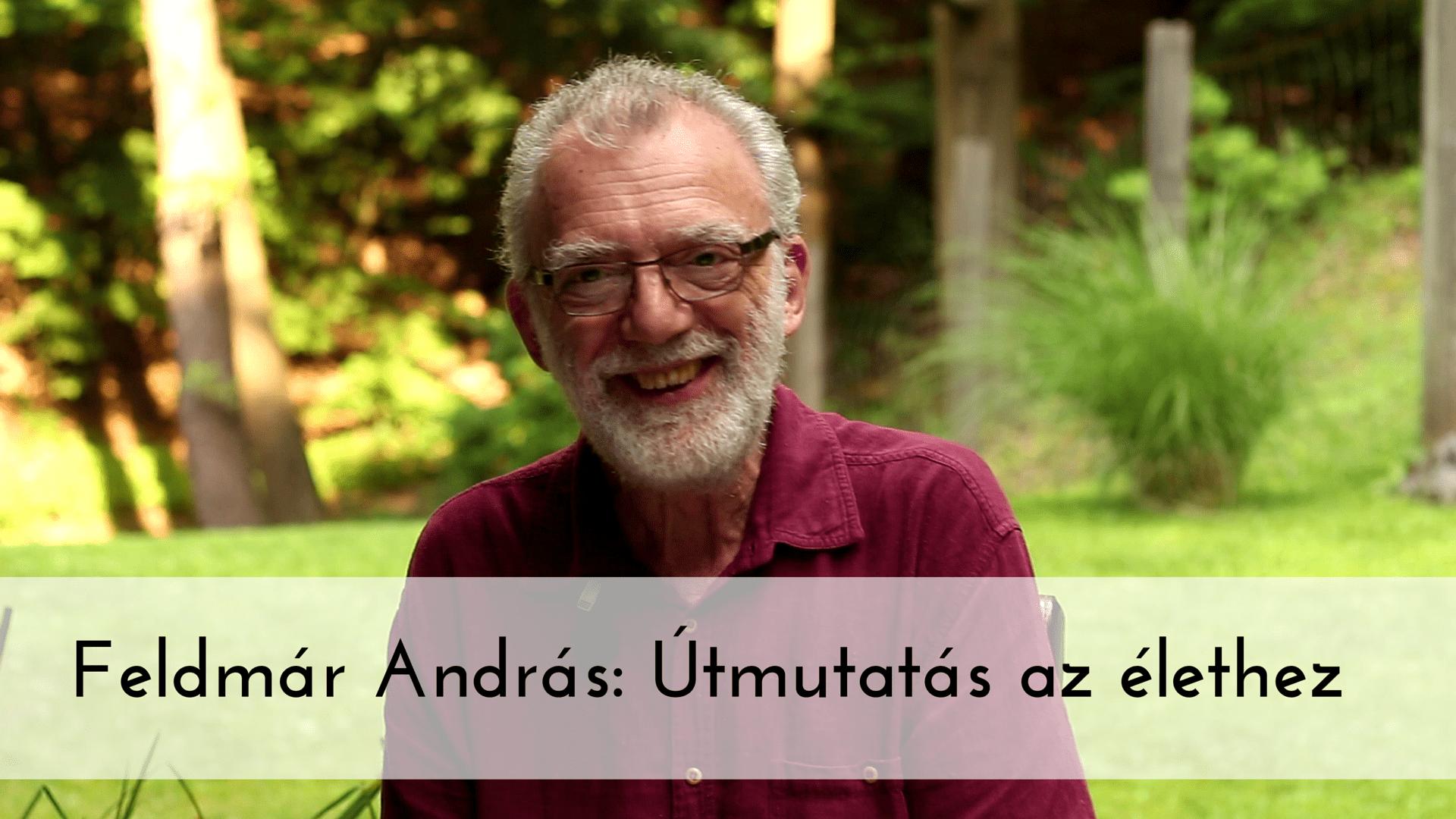 Feldmár András- Útmutatás az élethez